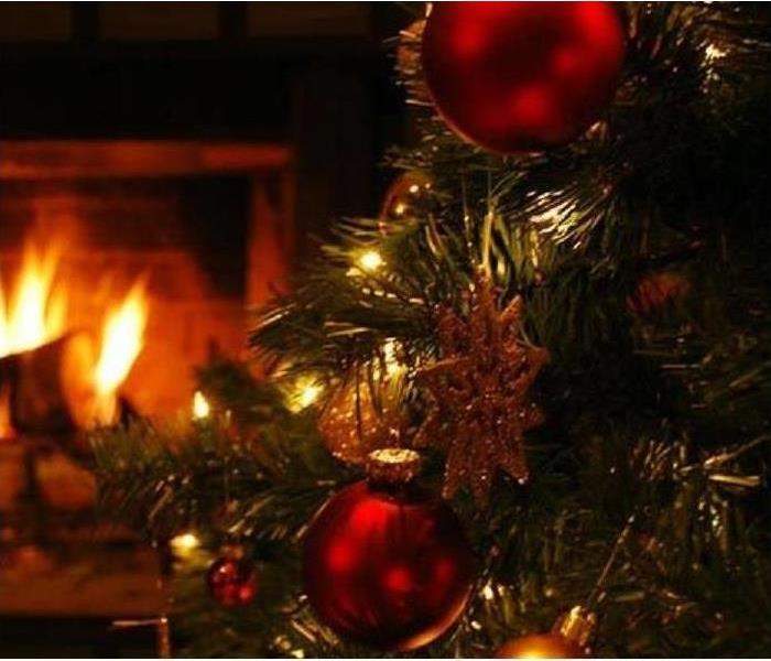 Fire Damage Choosing a live Christmas tree this year? Follow our tips to find the perfect one!