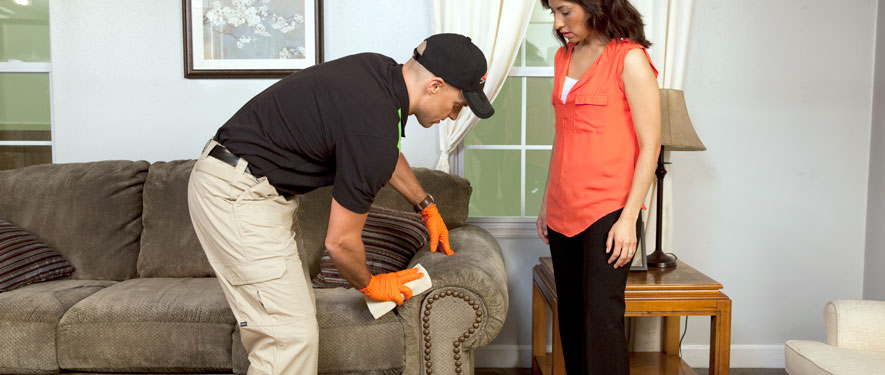 Mahopac, NY carpet upholstery cleaning